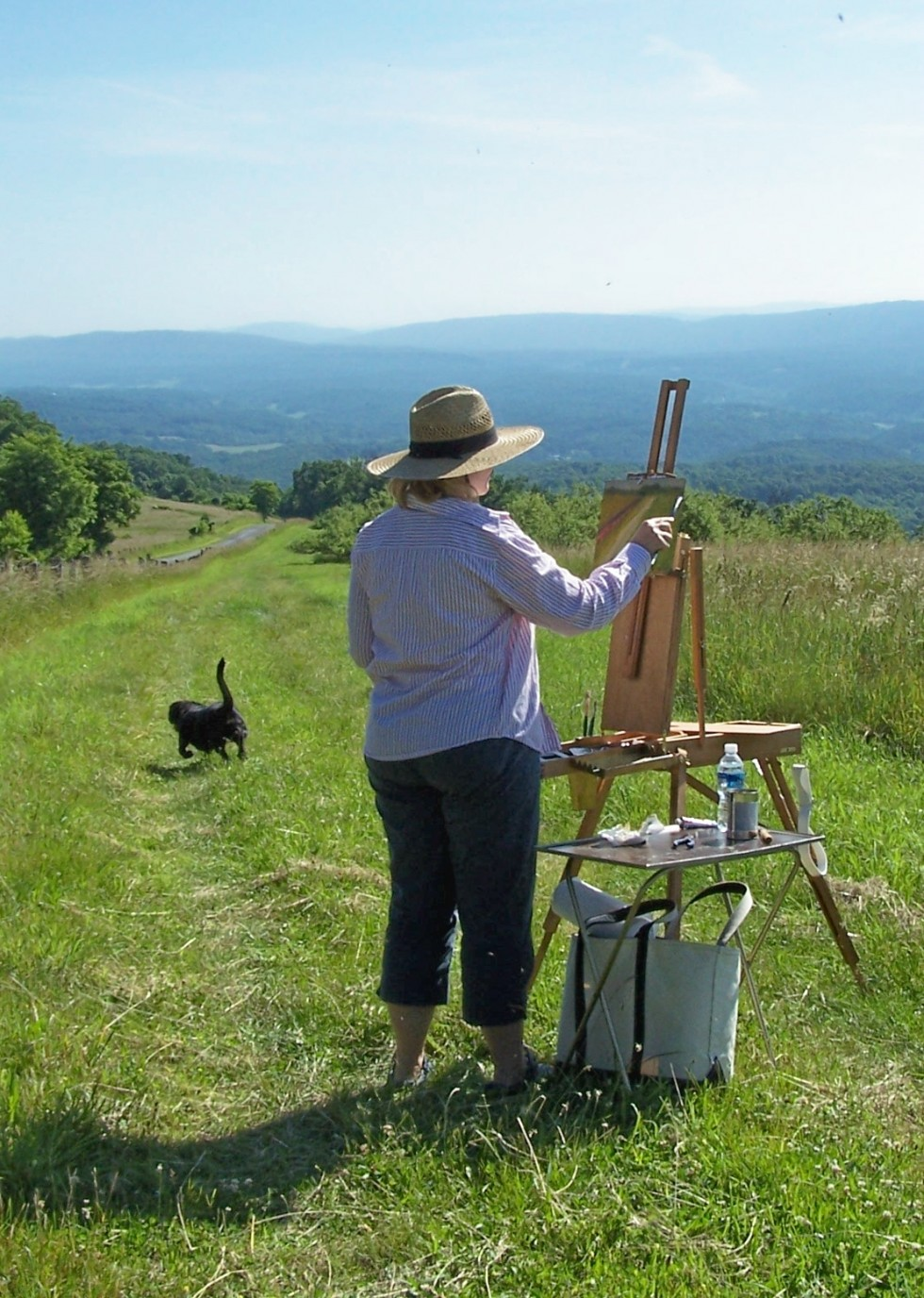 Plein air event and art sale/reception